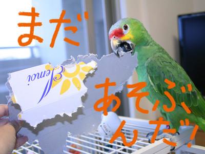 20140620_sonogo