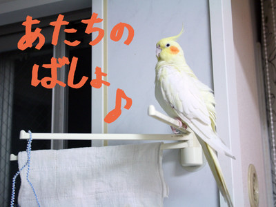 20140627_itatanoaru