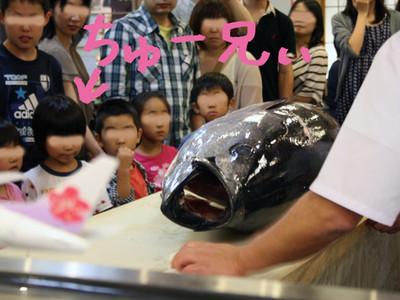 20140628_sizuoka2